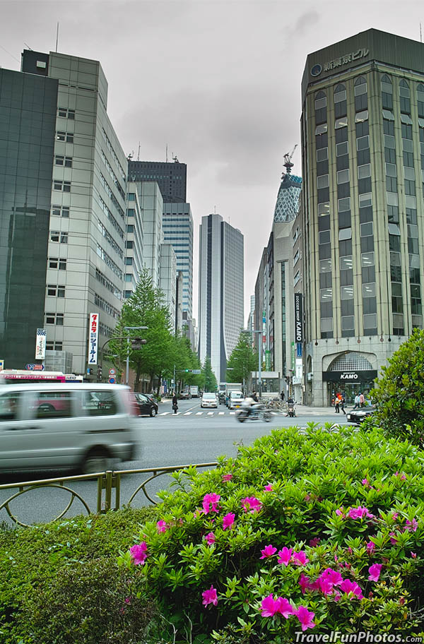 Beautiful Buildings in Shinjuku, Tokyo, Japan