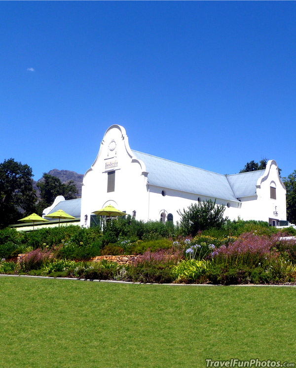 Dornier Vineyards Winery in Cape Town South Africa