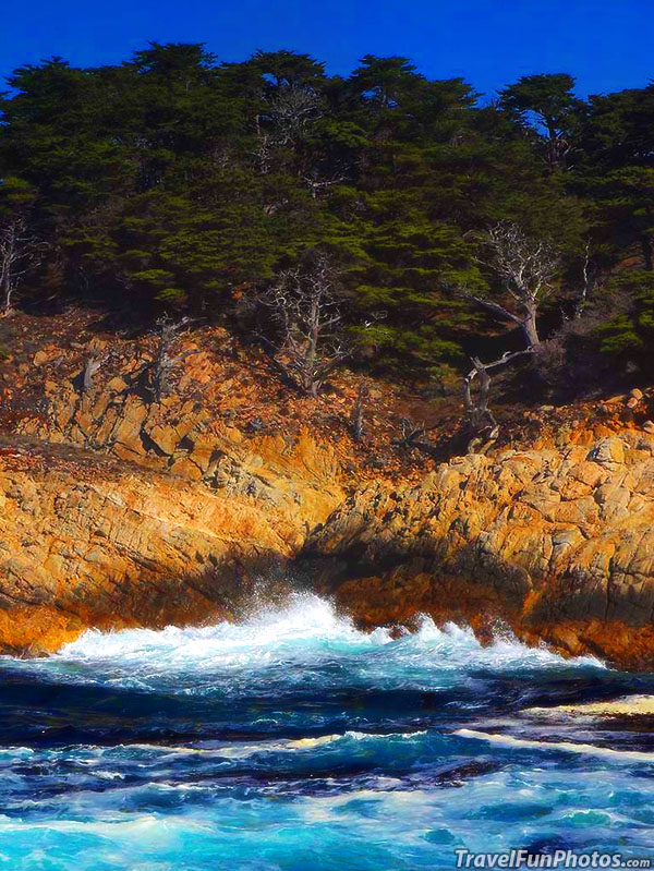 Point Lobos State Reserve in Carmel California - USA