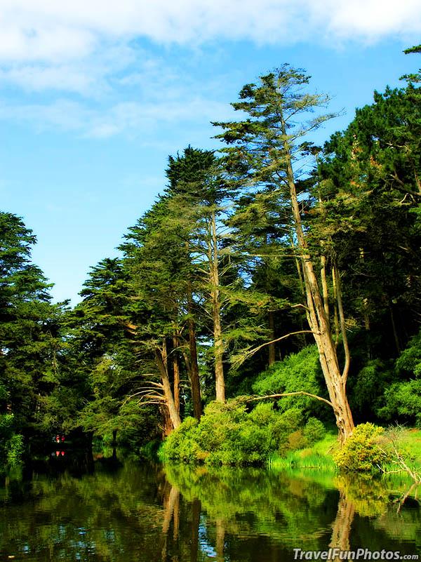 Stow Lake San Francisco California - USA